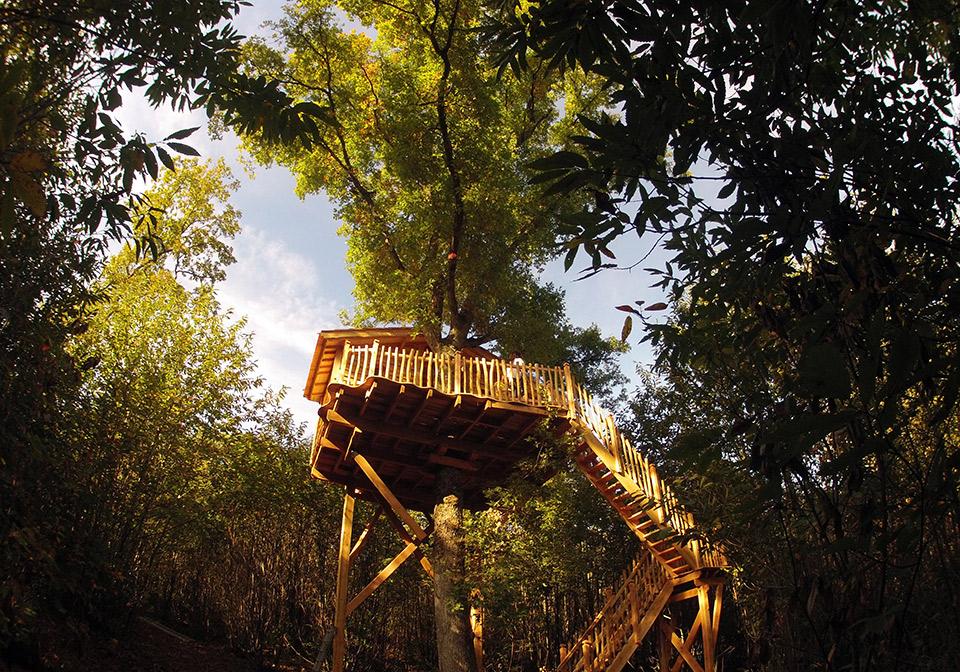 Vue d'ensemble de la cabane Escalier